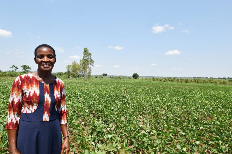 Namutamba Siida, a member of the Bulunguli cooperative in a soybean field