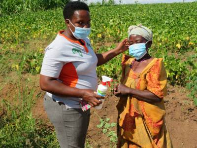 Our Program Officer is assisting a farmer to wear her masks during follow up on planting in Uganda.