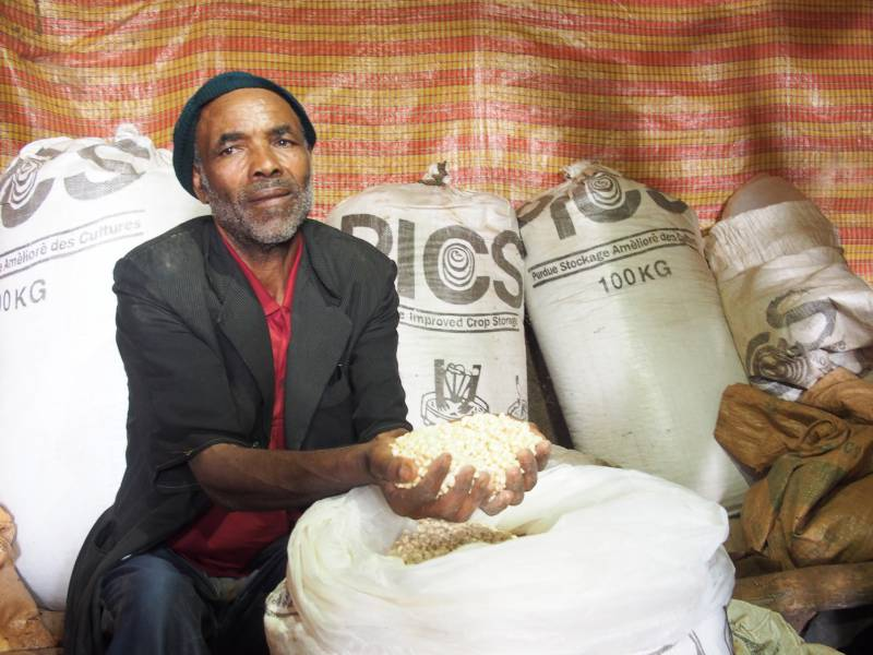 Smallholder farmer Ato Tesfaye Andualem with his surplus maize grain stored in PICS bags