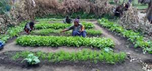 Permagarden host farmer in  Oromia Region, Ethiopia